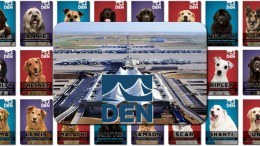 devner international airport