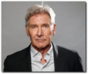 harrison ford aviation accident