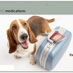 Rx for animal during travel