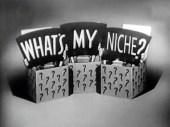 Whats My Niche