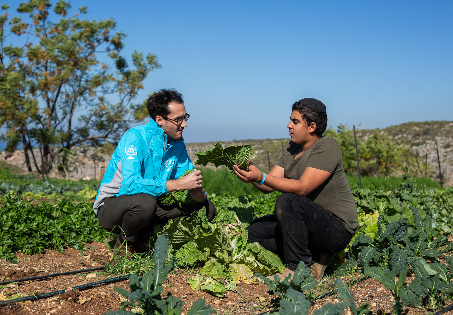 JDC volunteer crouching with a farmer holding a piece of lettuce in his field in Israel.
