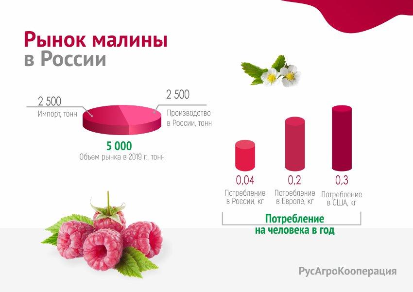 Бизнес Презентация РусАгроКооперация