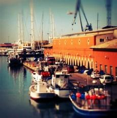 Palma harbour...