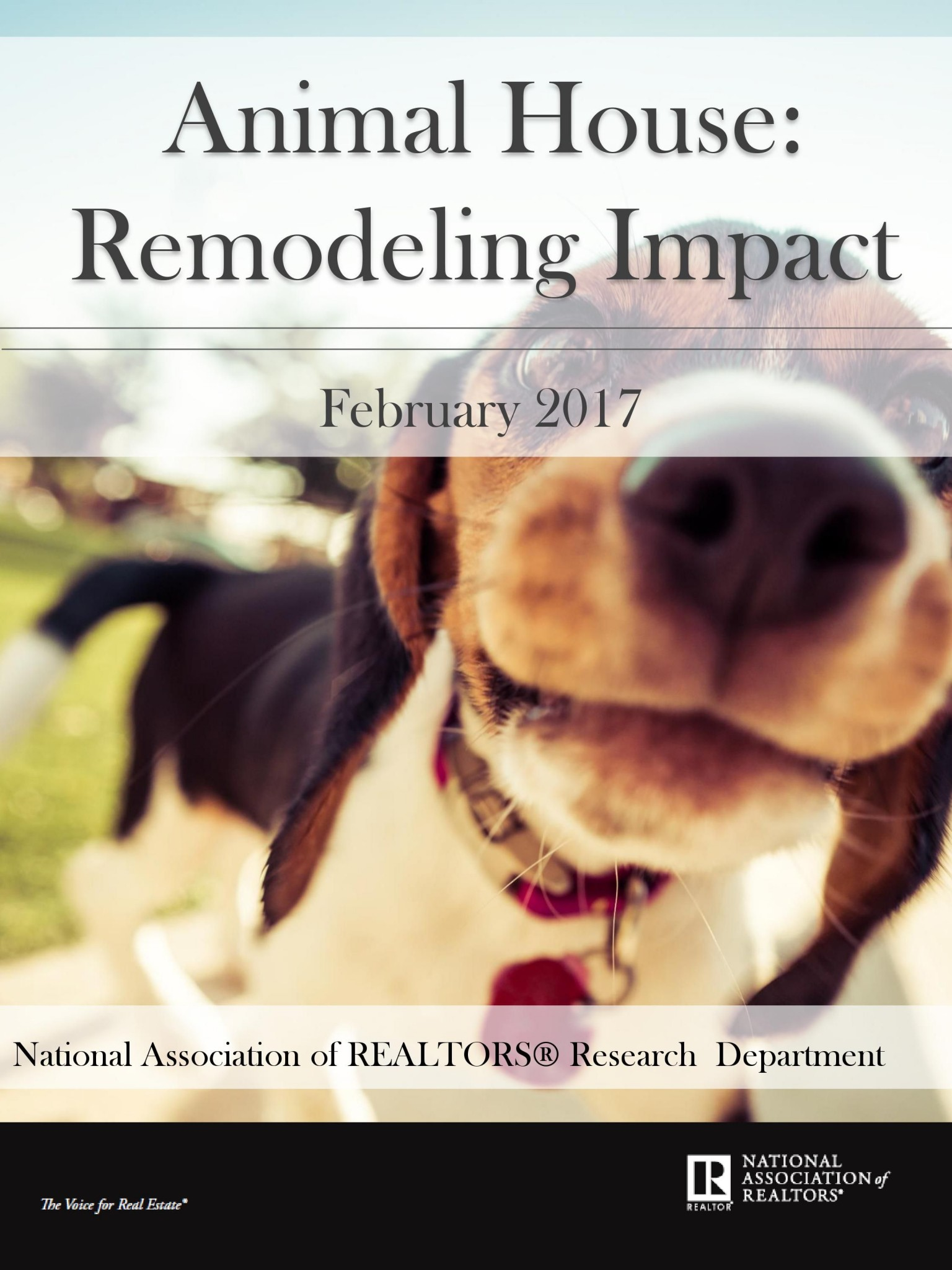 How Pets Impact Home Buyers & Home Sellers Decisions
