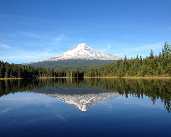 Landscape of Mt. Hood Reflected in Trillium Lake, Oregon
