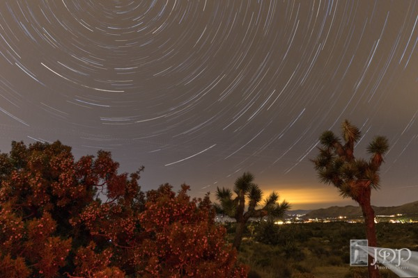 Joshua Tree Star Trail