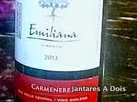 Vinho Emiliana Carmenere 2013