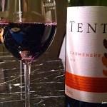 Vinho Tinto Tenta Carménère 2013