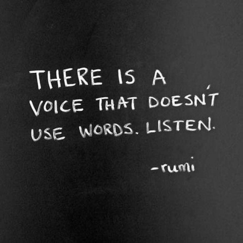 Rumi A voice that doesn't use words.
