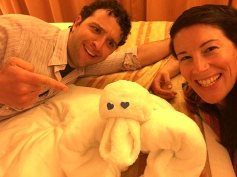 We got towel animals every night!