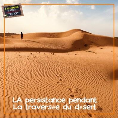 commerce et traversée du désert
