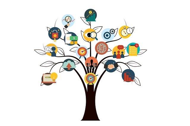 Curriculum Vitae simple et efficace : arbre avec les compétences à la place des fruits sur les branches