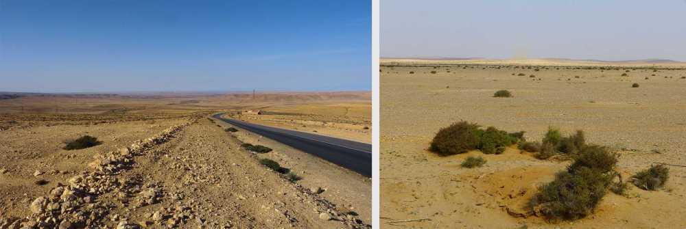 K1024_road 2 agadir
