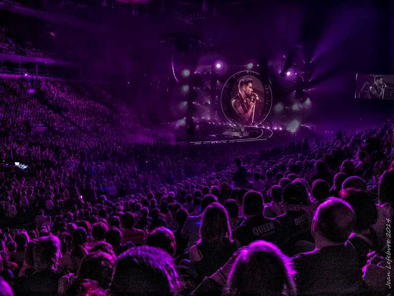 Adam Lambert and crowd