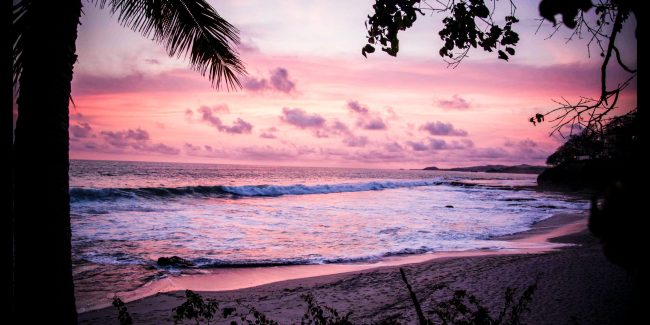 Pink sunset on the beach with palm tress on either side.