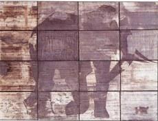 Éléphant télégénie 01, 1996