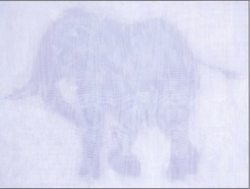 Éléphant télégénie 02, 1996