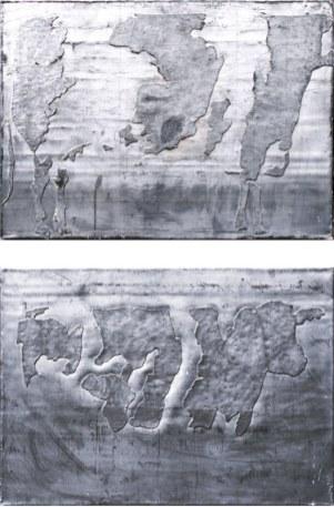 Vache 06 et 08, 1996