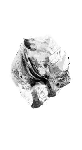 2017-Récit de la peau-06