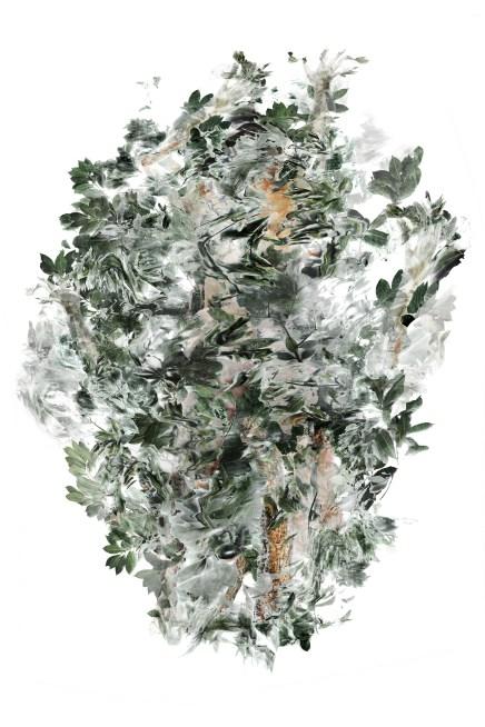 2017-La flèche de plomb 01, 200 x 137 cm