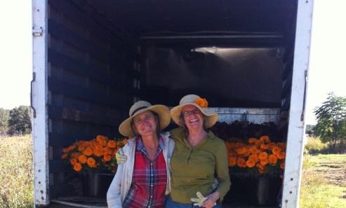 The Arnosky Flower Farm by Jean Brashear