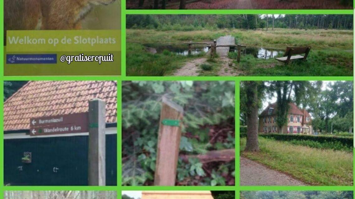 Landgoed de Slotplaats in Bakkeveen.