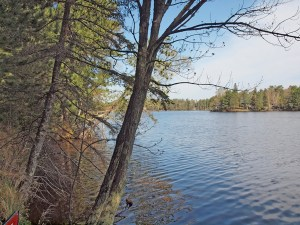 Fish for walleye, norther, LM bass, and panfish