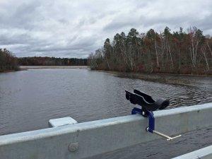 New Bridge with rod holder