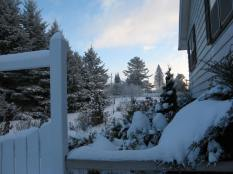 SnowymorningonwesterDec172013 002