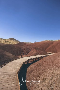 Path through Painted Hills