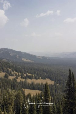 View from Mount Washburn Yellowstone National Park