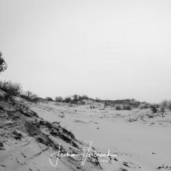 zwart wit fotografie, fine art, werk aan de muur, fotograaf rotterdam, natuurfotografie, reisfotografie, jeanine verbraak