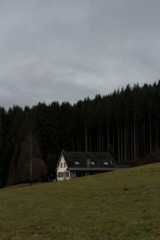 Anould, Vosges, Vogezen, bergen, frankrijk, natuurfotografie, reisfotografie, jeanine verbraak