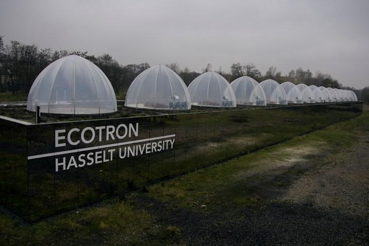 Ecotron ecosystemen klimaat