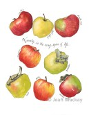 Apples, watercolor, 9x12