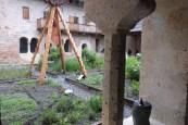 Le cloître - le jardin