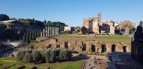 Au fond de l'image le temple de Vénus et de Rome.