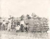 Défenses confédérées