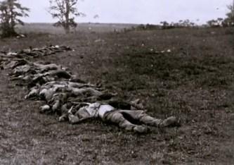 Les cadavres