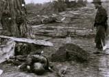 Antietam - les morts 1