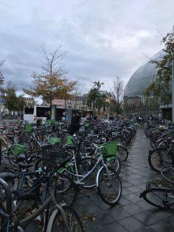 Super many bikes