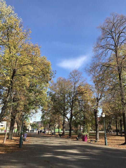 lovely park in Colmar