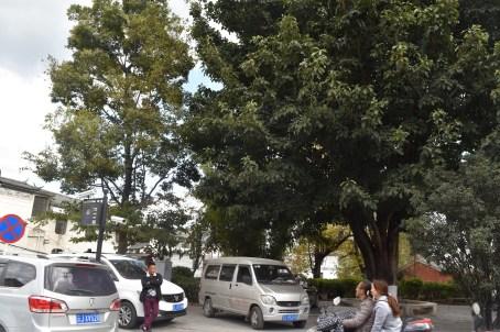 11-DL-Daligucheng-DSC_0078