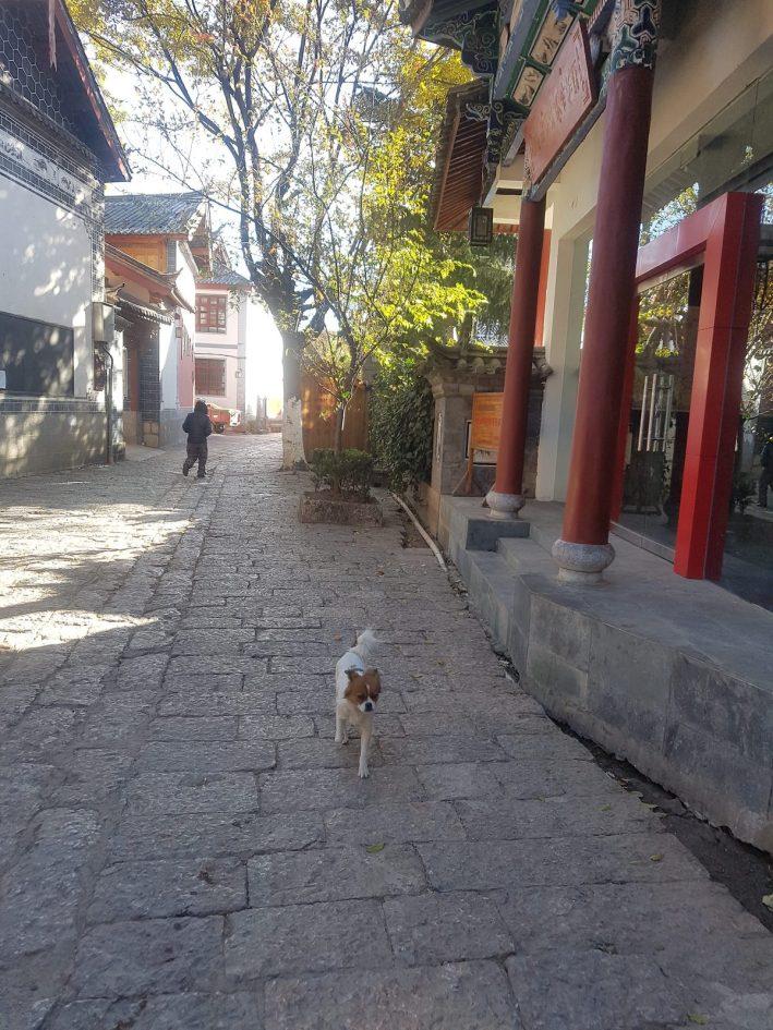 16-LJ-Lijianggucheng-20161225_101212