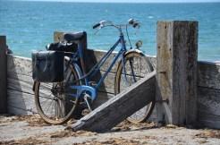 NoirmoutierL'Épine_StJean2