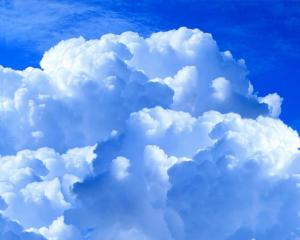 This is a cumulus cloud. It has the same puffy areas on the top like the cauliflower plants.