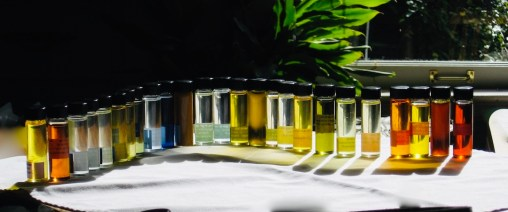 28 bottles of different colors that show many different perfume notes