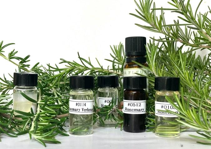 6 bottles of rosemary oil nestled in a large branch of Rosemary herb