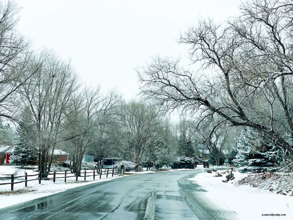 A wet road lined with snow and bare trees . . . a little stark, like how fear sometimes causes us to feel