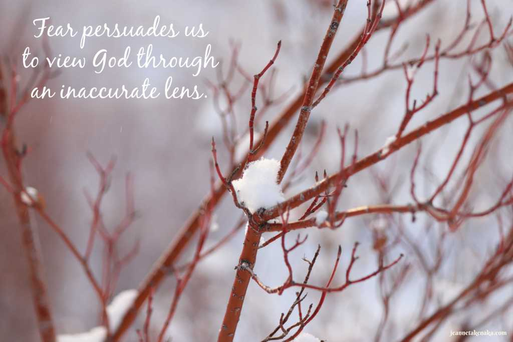 """A meme that says, """"Fear persuades us to view God through an inaccurate lens."""" on a backdrop of a closeup of branches holding a small pinch of snow"""